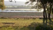 Riviere du Faou, commune d'Hanvec, Zone Natura 2000 de la rade de Brest - ©Serge-H